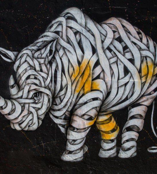 street-art-rhino-1498×999